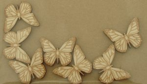 Butterfly - laser cut wooden craft shapes